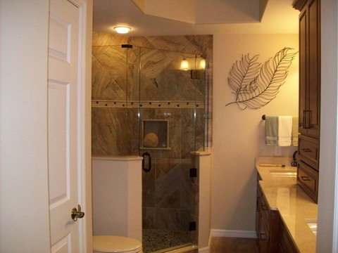 glass shower door and surround