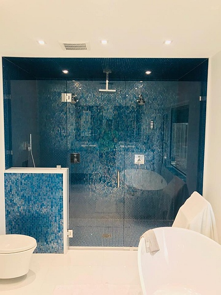 glass shower door and wall